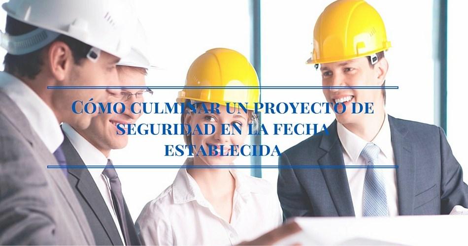 proyecto seguridad hora establecida consultor